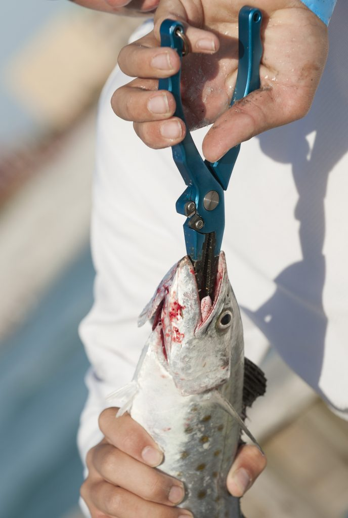 The 10 best saltwater fishing pliers for Best fishing pliers