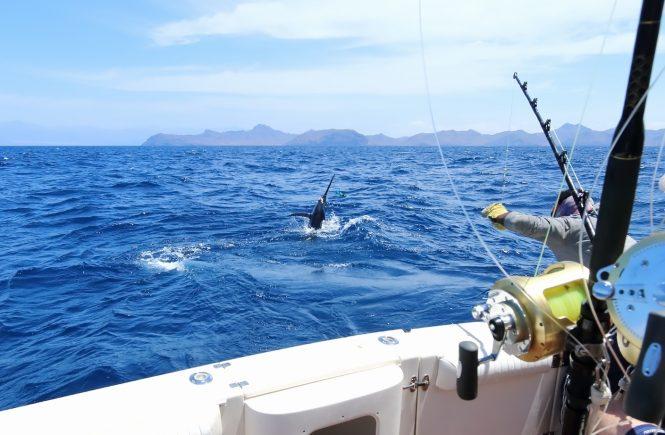 Deep Sea Fishing Hooks