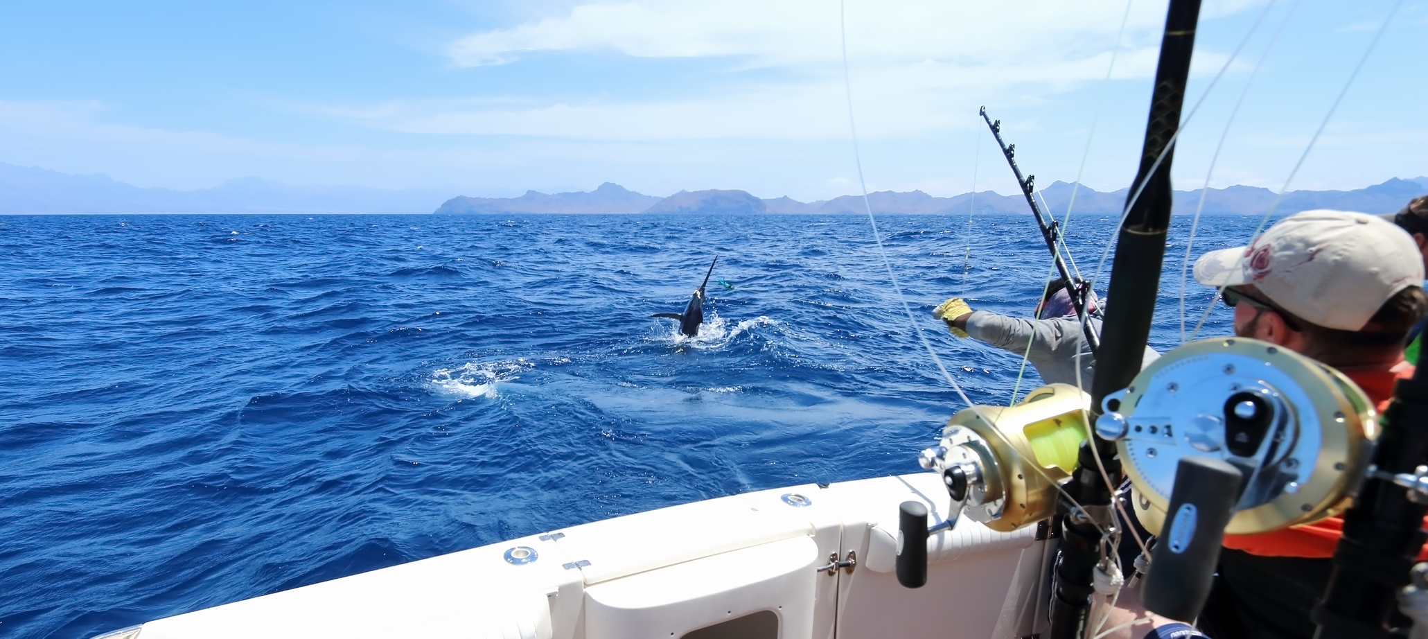 A complete guide to buying deep sea fishing hooks for Deep sea fishing gear
